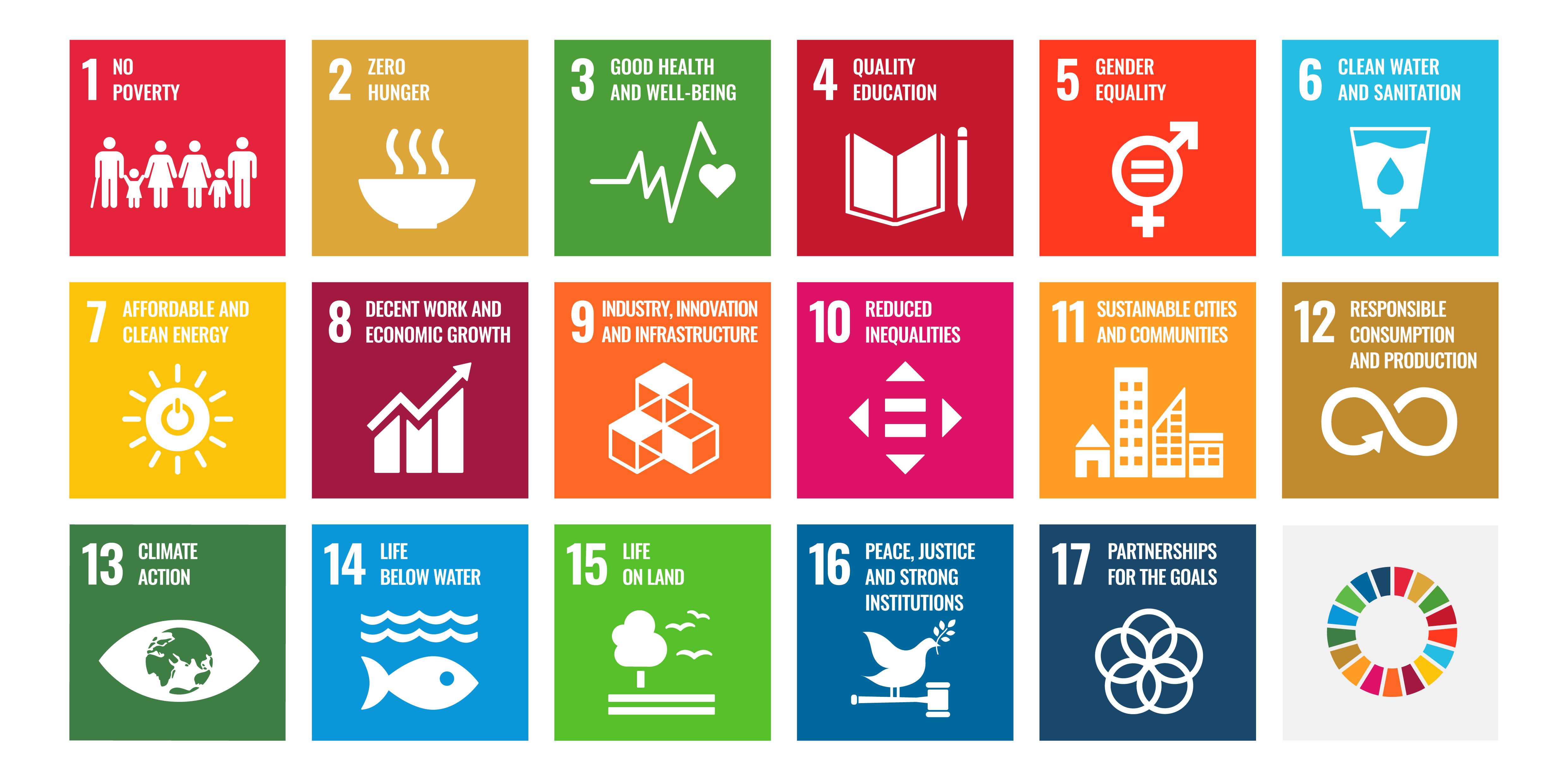 Dit is wat de SDG's betekenen en waarvoor ze in het leven zijn geroepen